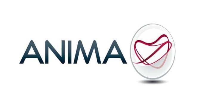 Azioni Anima Holding
