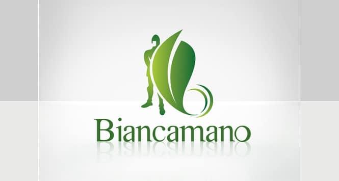 Azioni Biancamano